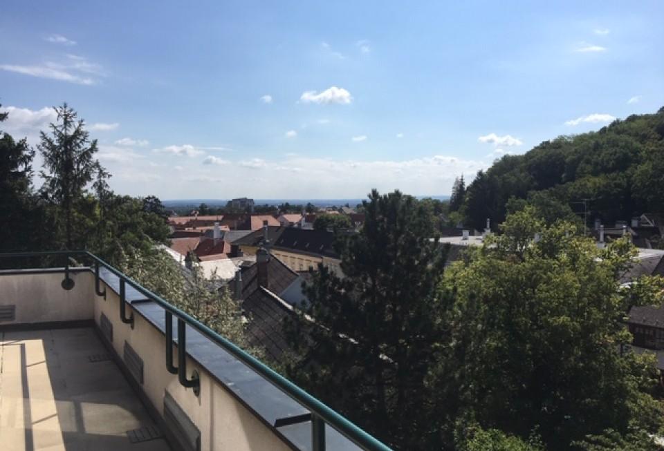 Elisabethstraße 8